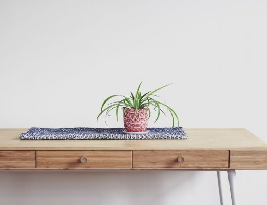 Air Purifying Plant on table - Sustainable Vibes